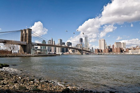 Brooklyn-Bridge-Skyline-Birds-01